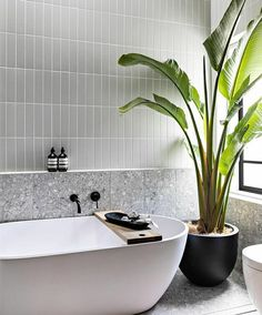 Bathroom Renos, Laundry In Bathroom, Bathroom Layout, Bathroom Renovations, Small Bathroom, Modern Bathroom Tile, Bad Inspiration, Bathroom Inspiration, Terrazo