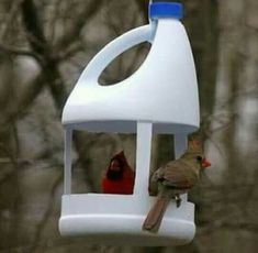 Recycling plastic bottles for Vog . - Recycling plastic bottles for bird feeders creative ideas for recycling crafts - Homemade Bird Feeders, Diy Bird Feeder, Plastic Bottle Crafts, Recycle Plastic Bottles, Plastic Recycling, Plastic Plastic, Recycling Ideas, Recycled Crafts Kids, Crafts For Kids