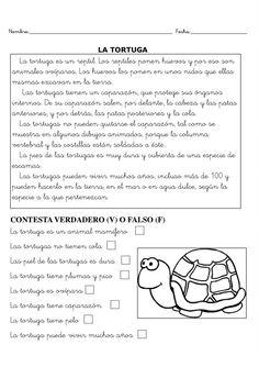 Fichas para trabajar la comprensión lectora Reading Comprehension Worksheets, Reading Fluency, Reading Passages, Reading Practice, Guided Reading, Spanish Language Learning, Homeschool, Blog, Craft
