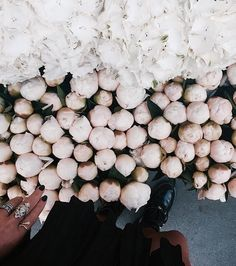 Imagem de flowers, white, and rose