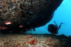 7. Guarapari, Espírito Santo -  Por falar em navios naufragados, quem visita Guarapari poderá se deparar com dois deles ao realizar um mergulho. Se tratam de Bellucia (1903) e Victory 8B (2003).  Foto Sagrilo.
