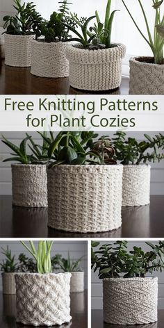 Best 11 Free Knitting Patterns for Plant Cozies – 5 different patterns for covers for plant containers. The patterns include: Lattice Cable, Jute, Herringbone, Garter Stitch, Stockinette. Designed by Brome Fields. The designs use from 60 – 140 yards – Knitting Stitches, Knitting Patterns Free, Free Knitting, Free Pattern, Crochet Patterns, Knitting Ideas, Knitting Tutorials, Crochet Ideas, Crochet Basket Tutorial
