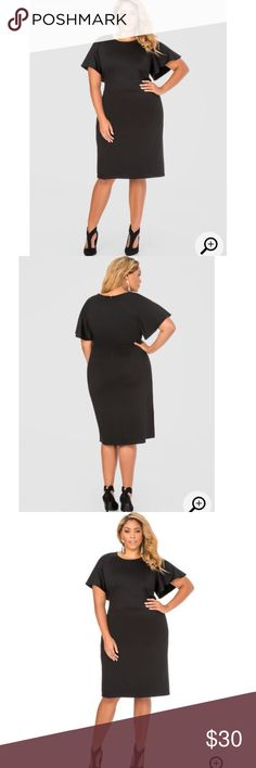 Tailor flutter sleeve dress NWT NWT! Sexy professional and classy all at once! Can really be dressed up or down its a great canvas! ships out with a free plus size clothing item! FREE GIFT Brands may be: forever 21, torrid, Ashley Stewart, fashion to figure, Charlotte Russe SHOES SOLD IN DIFFERENT POST Ashley Stewart Dresses