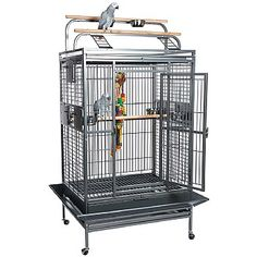 This Santos Play Gym Top Parrot Cage gives your Parrot lots of space to play and exercise. Check it out now. For and Large Parrot Cages For Sale, Large Parrot Cage, Large Bird Cages, Fruit Holder, African Grey Parrot, Pet Gear, Parrot Toys, Play Gym, Iron Steel