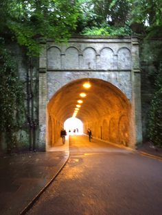 Reigate railway vaults Vaulting, Surrey, Gate, Buildings, New Homes, History, Travel, Trips, Portal
