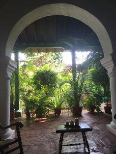 Patio, Outdoor Decor, Plants, Home Decor, Santa Cruz, Decoration Home, Terrace, Room Decor, Porch