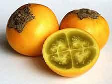 Fruta: Lulo