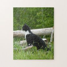 Cute Kitten Photo Puzzle - unusual diy cyo customize special gift