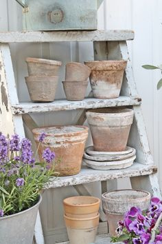 Flea market finds - vintage terracotta pots - it can take years of weathering to get this much character, pick up some old pots for next to nothing and create a display in the garden