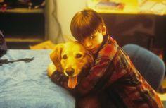 Air Bud (1997) Air Bud, Attractive Men, Movie Stars, Film, Disney, Dogs, Movies, Animals, Youth