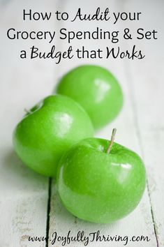 How to Audit your Grocery Spending & Set a Budget that Works - If you really want to save on your grocery budget, you need a budget that works for your family! Here's help for setting one up. Best Money Saving Tips, Money Tips, Saving Money, Save Money On Groceries, Ways To Save Money, Groceries Budget, Financial Peace, Financial Tips, Budgeting Finances