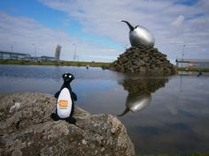 In #Iceland you have a chance of getting your rental car for free by simply taking pics of the great Auk on your travels! :)   #thegreatauk #carrentaliceland #carrentalkeflavik #carrentalreykjavik #carhireiceland #rentalcariceland