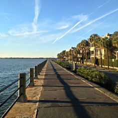 The Battery in Charleston, SC | Book a carriage ride or walking tour of Charleston through Wild Dunes Resort Island Adventures: http://www.wilddunes.com/charleston-resort-activities.php
