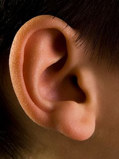 Common Ear, Nose, and Throat Complaints | Everyday Health