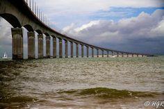 Pont de l'île de Ré (16)