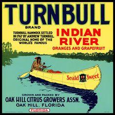 Turnbull Indian River Citrus