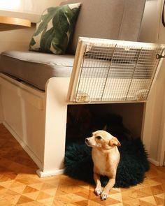 DIY Cozy Dog Kennel (part of our vintage camper renovation!) DIY Cozy Dog Kennel (part of our vintage camper renovation! Happy Campers, Rv Campers, Teardrop Campers, Teardrop Trailer, Rv Travel Trailers, Camper Trailers, Travel Trailer Decor, Trailer Diy, Travel Trailer Remodel