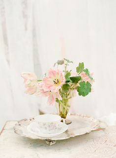 Spring Blossom Shoot by Jodi Miller