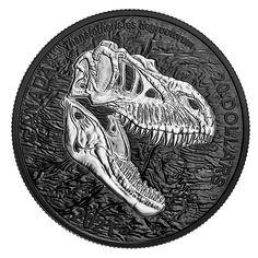 Coin Design, World Coins, Effigy, Rock Formations, Silver Dollar, Coin Collecting, 1 Oz, Silver Coins, Prehistoric