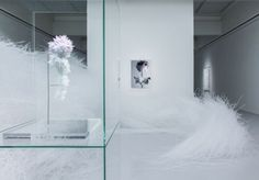 Crystallize Exhibition - Art - Inspired by the musical vibrations of Swan Lake by Tchaikovsky. - Japanese artist Tokujin Yoshioka