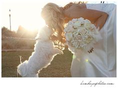 bride and her dog, photo by Kim Hayes Photography