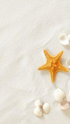 Pure Seaside Beach Starfish Seashell – My Pin Page