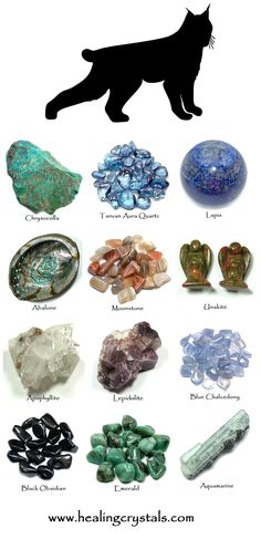 Lynx Animal Totem - Crystal Reference Library - Information About Crystals As A Healing Tool