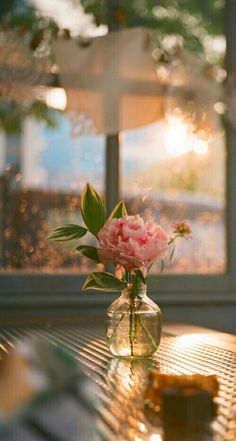 Flowers photography peonies dreams 45 new ideas Art Floral, Amazing Flowers, Beautiful Flowers, Simply Beautiful, Beautiful Things, Flower Aesthetic, Aesthetic Light, Jolie Photo, Flower Wallpaper