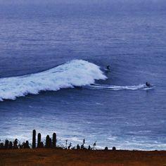Punta de Lobos Pichilemu Chile