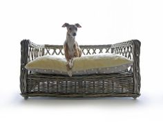 The Raised Rattan Dog Bed by Charley Chau - handsome Theo not included.
