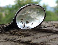 Dandelion necklace, dandelion pendant, terrarium necklace, botanical,science jewelry ,natural specimen ,real plant jewelry