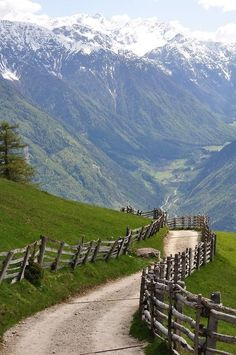 Spring in the Alps, Südtirol, Austria