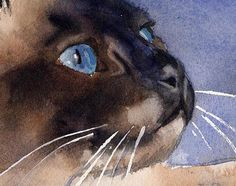 Chocolate Applehead Siamese Cat Art Print of my watercolor by rachelsstudio | Etsy
