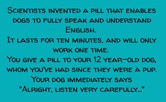 "Scientists have invented a pill that enables dogs to fully speak and understand English. It lasts for ten minutes and will only work once. You give a pill to your 12-year-old dog, whom you've had since they were a pup. Your dog immediately says, ""All right, listen very carefully..."""