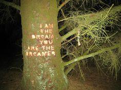 http://www.skovsnogen.dk/ tree tag