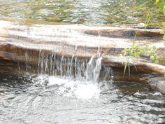 a small creek near Wallowa Lake, Oregon