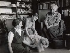 """""""Here's another great photo of Einstein with his wire fox terrier Chico. Fox Terriers, Wire Fox Terrier, Albert Einstein Birthday, Albert Einstein Photo, Pets, Pet Dogs, Doggies, Modern Physics, Theoretical Physics"""
