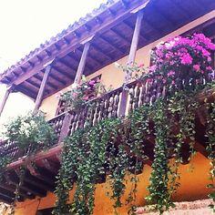 Jardines colgantes de Cartagena