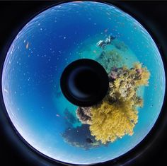13 July 2015 | Immersing audiences in 360º film technology: A showcase of striking works by Plymouth University graduate Sue Austin will go on display for three days of interactive activities. https://www.plymouth.ac.uk/news/exhibition-immerses-audiences-in-360-film-technology