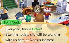 Aussehen - Animal Crossing: Happy Home Designer - Next Leaf