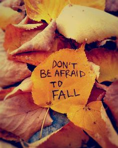Don't be afraid to fall