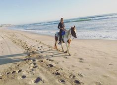 Keep Calm and Giddy Up!🤠 #yeehaw #imperialbeach #horseriding #anniversary #husbandandwife #sunsetporn #animalkingdom #sandiego #coronado  #morningslikethese #gaslampquarter  #beautifuldestinations #awesomepix #main_vision #fantastic_earth #birkadraj #earth_deluxe #visualcreators #nature_perfection #mg5k #agameoftones  #master_shots #socality #animalsofinstagram #YourShotPhotographer #thatsdarling #TravelAwesome #stayandwander #wanderlust #roamtheplanet #imperialbeachlocals…