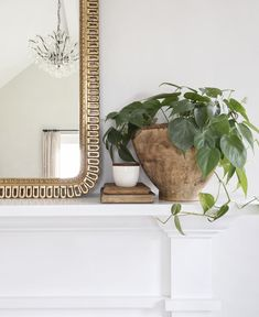 Styling with Greens Fireplace