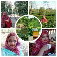 four tourist spots of srimangal I visited