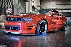 Mustang, i think i love u.. :D