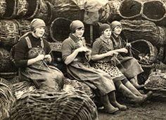 herring lasses