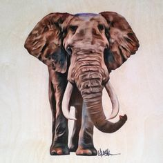 Elephant - 12x12 Print of Original Art - 100lb White Cardstock (Original done on Birchwood) by LaurenIllustrations on Etsy https://www.etsy.com/listing/240101996/elephant-12x12-print-of-original-art