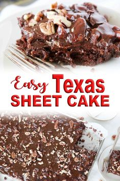 The best Texas Sheet Cake recipe with coffee for extra chocolate flavor and a buttermilk for a super tender crumb. It's an easy chocolate cake recipe everybody loves! Chocolate Cake Recipe Without Buttermilk, Buttermilk Recipes, Chocolate Cake Recipe Easy, Chocolate Flavors, Big Chocolate, Chocolate Coffee, Sheet Cake Recipes, Easy Cake Recipes, Dessert Recipes