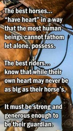 """The best horses """"have heart""""more than a human being can fathom let alone understand ...The best riders, know that while their own heart may never be as big as their horses ..... it must be strong and generous enough to be their Guardian"""