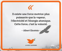 "Besoin de conseils pour réaliser tes rêves ? Télécharge gratuitement le guide ""4 étapes pour réaliser ses rêves"" : Citation Courage, Quote Citation, Albert Einstein Quotes, Self Development, Motivation Inspiration, Gods Love, Sentences, Quotations, Encouragement"